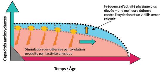 Figure Activité physique