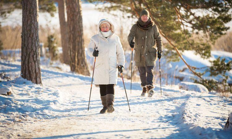 Deux personnes âgé faisant une randonnée dans le bois durant l'hiver