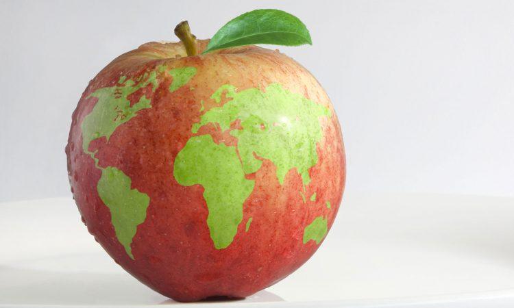 Une pomme rouge avec des taches vertes qui représentent les continents de la terre