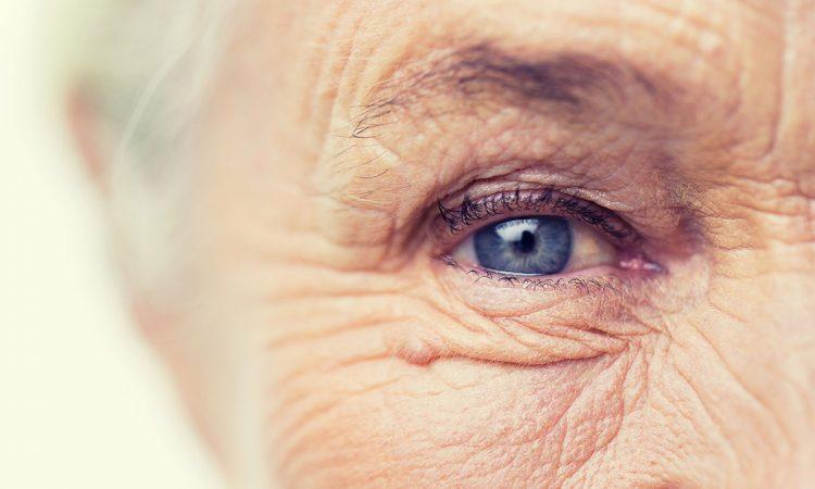 Gros plan sur un oeil d'une personne âgé