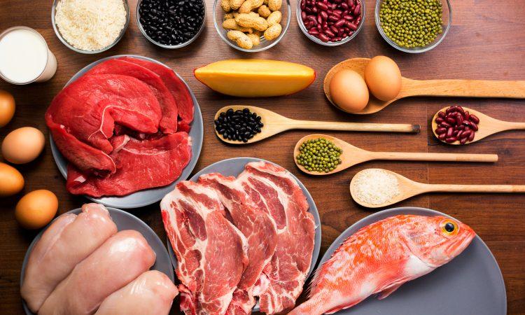 vue sur plusieurs types de protéines