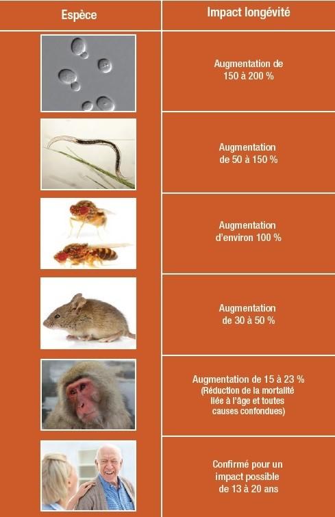 Tableau représentant l'impact de longévité