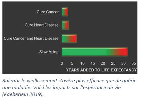 diagramme démontrant l'impact du ralentissement du vieillissement